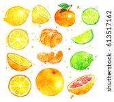 watercolor illustration set of...   Shutterstock . vector #613517162