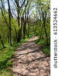 Health Paths Through The Woods...