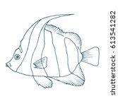 vector zebra fish  coral fish... | Shutterstock .eps vector #613541282