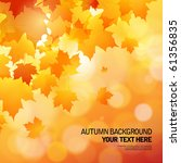 autumn background   Shutterstock .eps vector #61356835