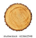 large circular piece of wood... | Shutterstock . vector #613662548