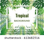 jungle background. tropical... | Shutterstock .eps vector #613682516