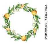 watercolor round frame fruit... | Shutterstock . vector #613694066