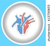 icon human heart anatomy on a... | Shutterstock .eps vector #613700855