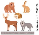 set of flat forest animals | Shutterstock .eps vector #613741988