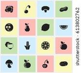 set of 16 editable vegetable...