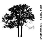 a tree silhouette on white... | Shutterstock . vector #613875185