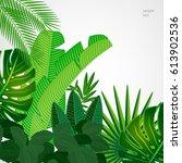 tropical leaves border on...   Shutterstock .eps vector #613902536