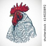 rooster head in graphic style...   Shutterstock .eps vector #614020892