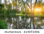 tranquil pond with lush green... | Shutterstock . vector #614051006