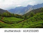 landscape of tea plantation and ... | Shutterstock . vector #614153285