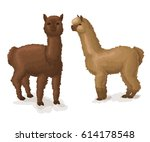 alpaca isolated on white two... | Shutterstock .eps vector #614178548