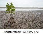 wide angle view of a lone loop... | Shutterstock . vector #614197472