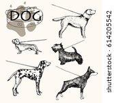 vector illustration  hand drawn ... | Shutterstock .eps vector #614205542