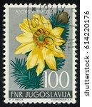 Small photo of RUSSIA KALININGRAD, 12 NOVEMBER 2016: stamp printed by Yugoslavia, shows Adonis, circa 1955