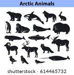 polar arctic animals collection | Shutterstock .eps vector #614465732