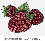 engrave isolated raspberry hand ... | Shutterstock . vector #614484872