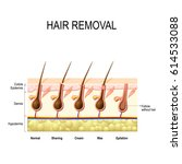hair removal with wax  cream ...   Shutterstock . vector #614533088