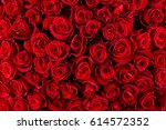 Stock photo natural red roses background 614572352