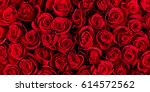 Stock photo natural red roses background 614572562