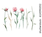 set of watercolor red and rose... | Shutterstock . vector #614590352