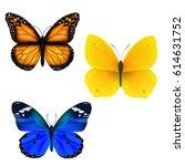 butterfly set | Shutterstock . vector #614631752