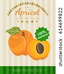 vector poster with a apricot.... | Shutterstock .eps vector #614699822