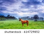 horses in the middle of a green ... | Shutterstock . vector #614729852