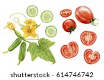 watercolor cucumbers and... | Shutterstock . vector #614746742