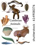 cambrian animals 3d... | Shutterstock . vector #614908376