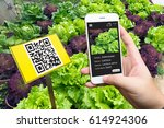 smart agriculture  farm.... | Shutterstock . vector #614924306