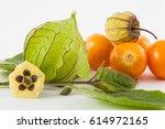 Cape Gooseberry Fruit  Flower...