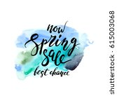 hand drawn spring sale... | Shutterstock .eps vector #615003068