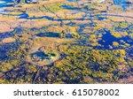 okavango delta  okavango... | Shutterstock . vector #615078002