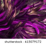 rooster feathers. carnival. | Shutterstock . vector #615079172