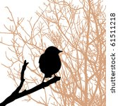 vector silhouette of the bird... | Shutterstock .eps vector #61511218