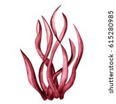 watercolor red seaweed.close up ... | Shutterstock . vector #615280985