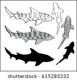 set of leopard shark | Shutterstock .eps vector #615283232