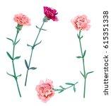 set of carnation schabaud  pink ... | Shutterstock .eps vector #615351338