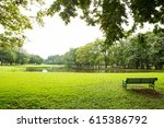 green lawn and trees in a park   Shutterstock . vector #615386792