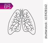 lungs vector illustration.... | Shutterstock .eps vector #615428162