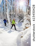 a couple cross country skis in...   Shutterstock . vector #615450428