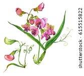 watercolor hand painted sweet... | Shutterstock . vector #615515822