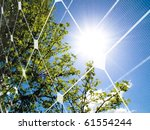 tree at spring against the sun... | Shutterstock . vector #61554244