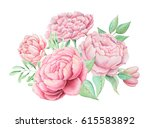 hand painted watercolor... | Shutterstock . vector #615583892