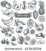 vector illustration sketch  ... | Shutterstock .eps vector #615618206