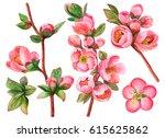 watercolor set of japanese... | Shutterstock . vector #615625862