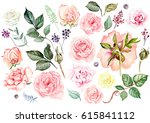watercolor set with roses  buds ... | Shutterstock . vector #615841112