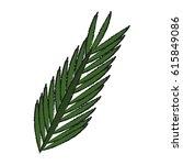 tropical leaves design | Shutterstock .eps vector #615849086