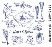 doodle set of herbs   spices  ... | Shutterstock .eps vector #615943616